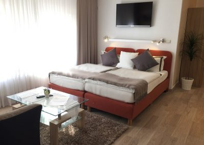 Superior double room apartment