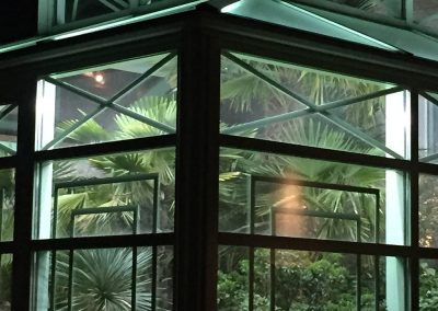 Das Palmenhaus im Winter
